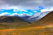 阿尔泰山。美丽的高原风景 — 图库照片