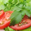 Tomatoes, parsley and lettuce — Stock Photo