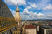 Vista da cidade da catedral de santo estevão — Foto Stock