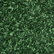 Green carpet texture — Stock Photo #3105378