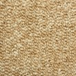 A beige carpet texture — Foto Stock