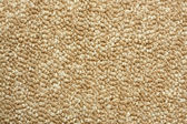 A beige carpet texture — Stock Photo