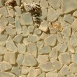 Glass pebbles texture — Stock Photo