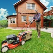 Stock Photo: The Lawnmower Man