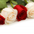 White and red roses isolated — Stock Photo #2694891