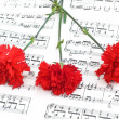 Carnation flower on musical notes — Stock Photo #2696471