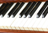 White and black keys of piano — Stock Photo