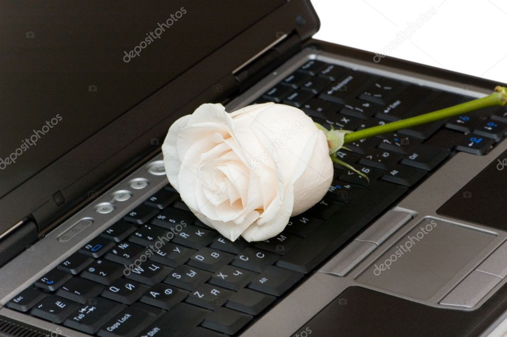 White rose on the black laptop keyboard — Stock Photo #2695521