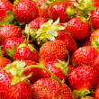 Lots of strawberries arranged — Stock Photo #2872605