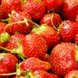 Lots of strawberries - Stock Photo