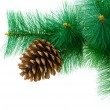 Christmas tree isolated on the white - Foto de Stock
