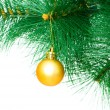 Stock Photo: Christmas decoration on the tree
