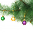 Christmas decoration on the tree — Stock Photo #2875406