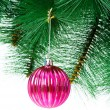 Christmas decoration on the tree - Foto de Stock