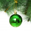 Christmas decoration on the tree — Stock Photo #2875450