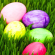 Easter concept - colourful eggs in grass — Stock Photo