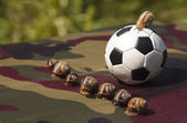 Garden snails play football — Stock Photo