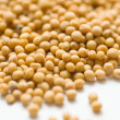 Mustard seeds - Stock Photo