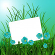 Sheet with flowers on blue nature background — Stock Photo