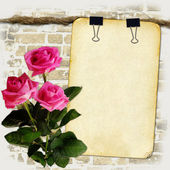 Grunge paper on old rope with roses — Stock Photo
