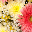 Bouquet — Stock Photo #2892505