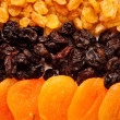 Dried fruits — Stock Photo #2892746