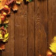 Autumn background with colored leaves - 图库照片