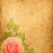 Old paper background, vintage rose — Stock Photo