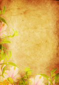 Old paper background, vintage flowers — Stock Photo