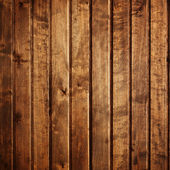 Texture avec des motifs naturels du bois — Photo