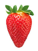 Red strawberry isolated on white background — Foto de Stock