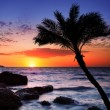 Beautiful sunset at tropical beach. — Stock Photo