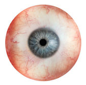 Eyeball — Stock Photo