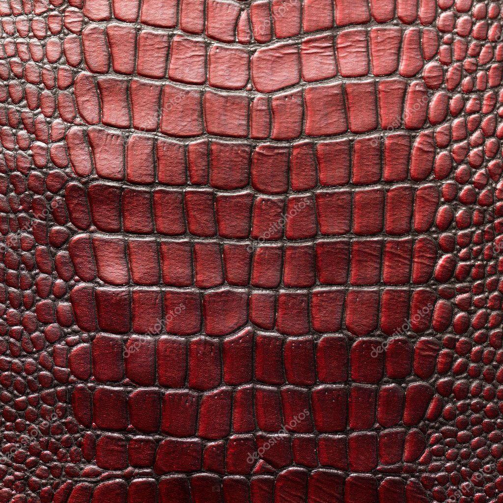 Сучки кожа и кости 1 фотография