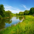 Stock Photo: Summer landscape with river