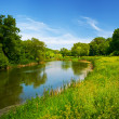 Summer landscape with river — Stock Photo #5130582