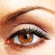 Beautiful Eye of Woman — Stock Photo #5131439