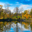 Stock Photo: Autumn colorful foliage over lake