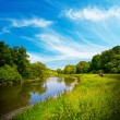 Summer landscape with river — Foto Stock
