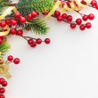 Christmas Pine and Berries — Stock Photo