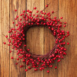Christmas wreath — Stock Photo #5136649