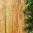 Christmas fir tree on wooden board — Stock fotografie #5137448