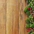 Christmas fir tree with berries — Stock Photo