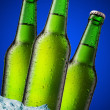 A beer bottle sitting in a container of ice — Stock Photo #5139235