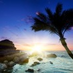 Beautiful sunset at tropical beach. — Stock Photo #5139832