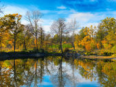 Autumn colorful foliage over lake — Stock Photo