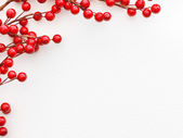 Red Berries on paper — Stock Photo
