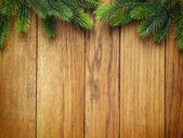 Christmas fir tree on wooden board — Zdjęcie stockowe