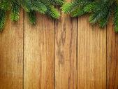 Fir kerstboom op houten bord — Stockfoto