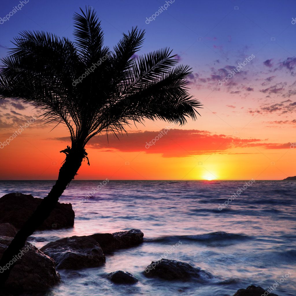 Exotic Beach: Beautiful Sunset At Tropical Beach.